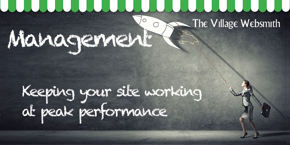 Web Site Maintenance: Having a website that works day in day out doesn't happen by accident.  To get ahead and stay ahead takes constant updating and careful content management.  With a wealth of experience in writing web and sales copy, our team can keep your site firing on all cylinders.